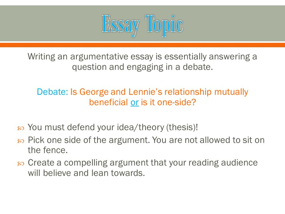 essays of argumentative writing