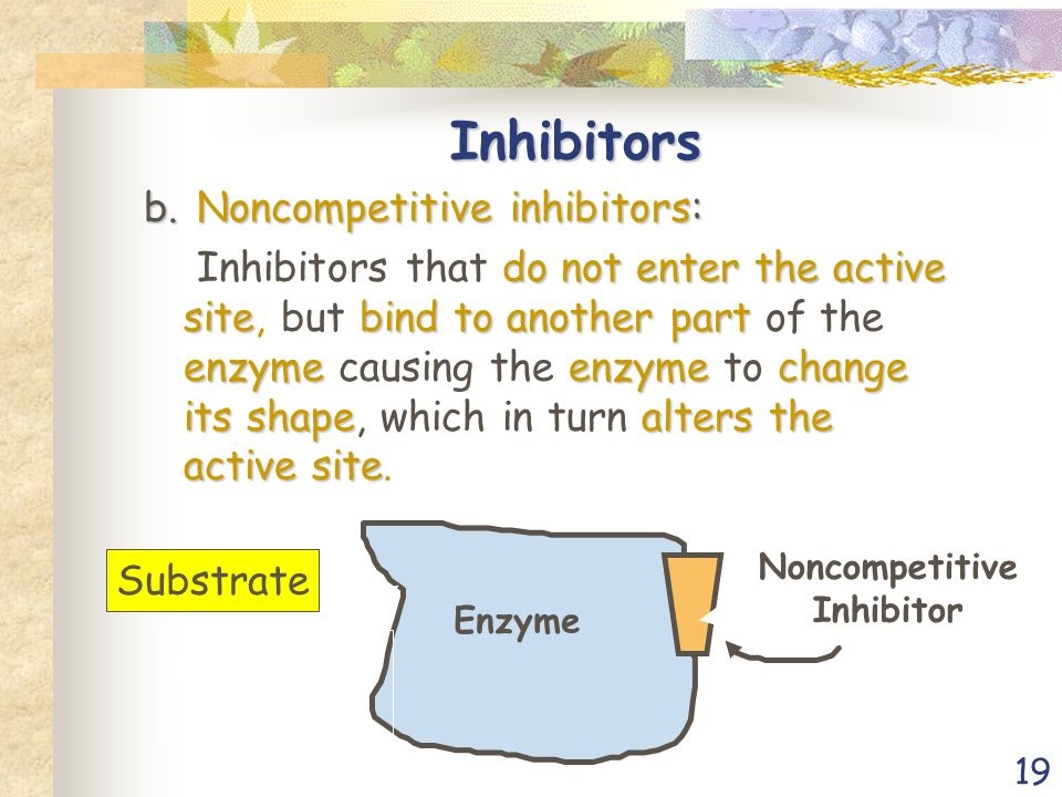 19 Inhibitors b.Noncompetitive inhibitors: do not enter the active sitebind to another part enzymeenzymechange its shapealters the active site Inhibitors that do not enter the active site, but bind to another part of the enzyme causing the enzyme to change its shape, which in turn alters the active site.