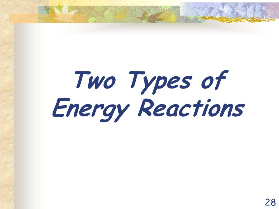 28 Two Types of Energy Reactions