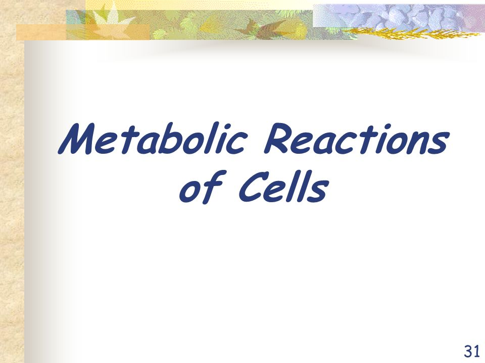 31 Metabolic Reactions of Cells