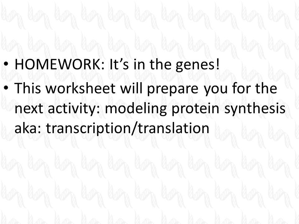 Protein Synthesis Activity Worksheet Photos - Toribeedesign