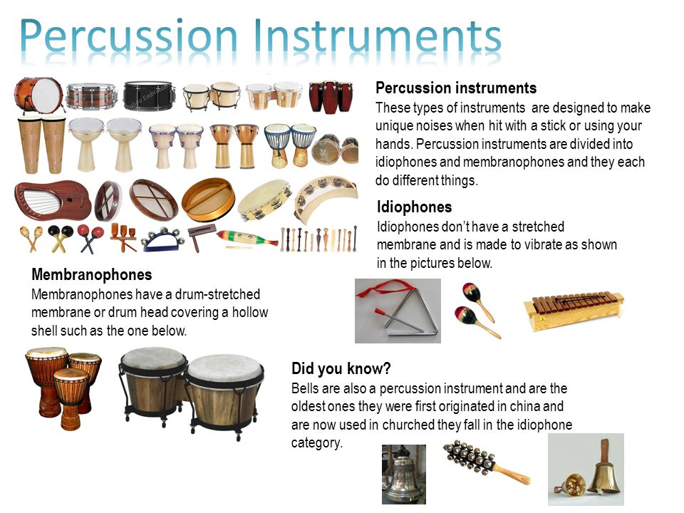 Worksheet Types Of Instruments percussion instruments these types of are designed to make unique noises when hit with a