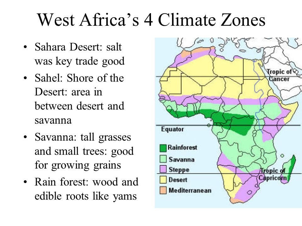 Savannas In Africa Climate