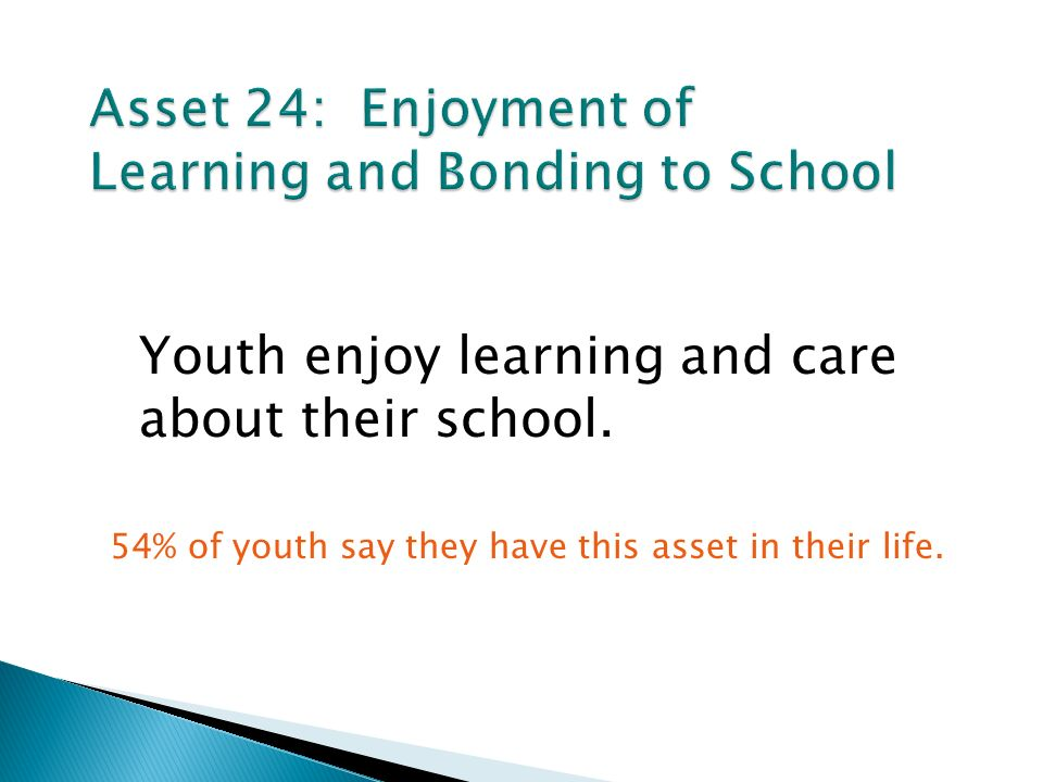 Youth enjoy learning and care about their school.