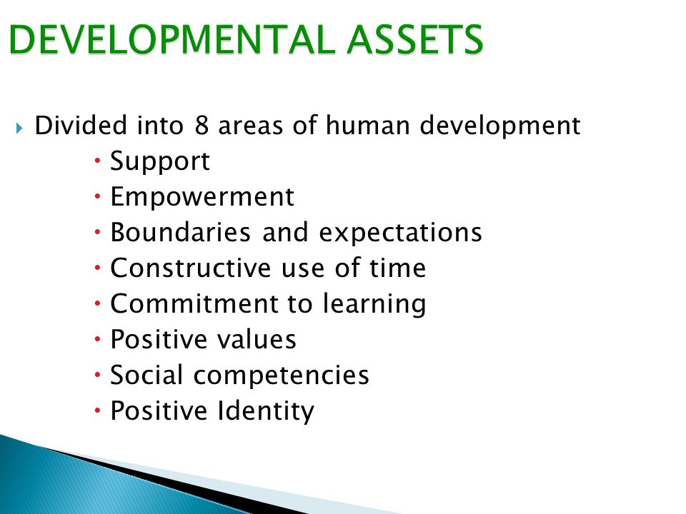  Divided into 8 areas of human development  Support  Empowerment  Boundaries and expectations  Constructive use of time  Commitment to learning  Positive values  Social competencies  Positive Identity