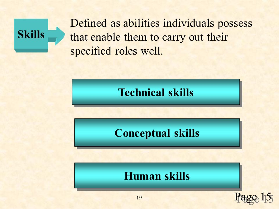 19 Skills Defined as abilities individuals possess that enable them to carry out their specified roles well.