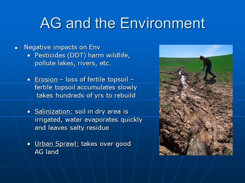 AG and the Environment Negative impacts on Env Negative impacts on Env Pesticides (DDT) harm wildlife,Pesticides (DDT) harm wildlife, pollute lakes, rivers, etc.