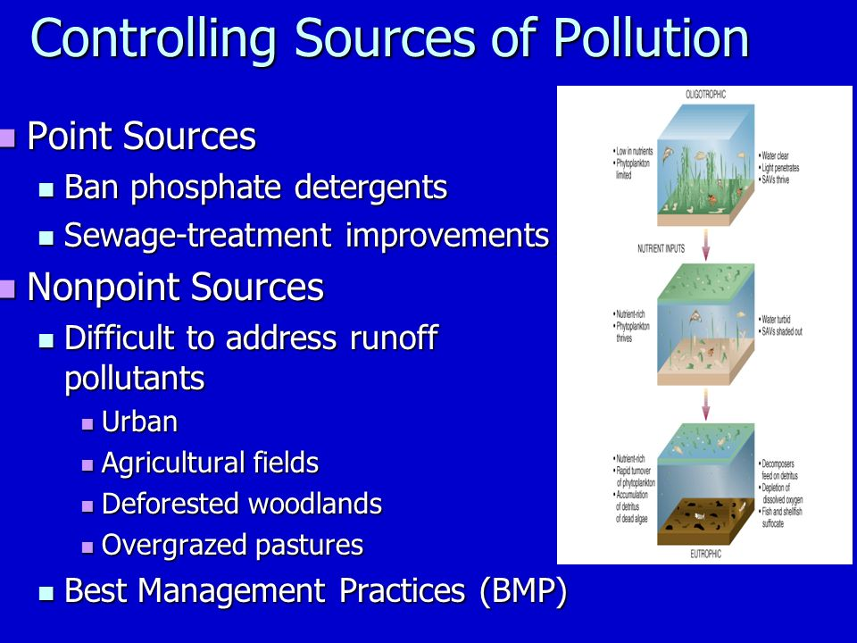 Controlling Sources of Pollution Point Sources Point Sources Ban phosphate detergents Ban phosphate detergents Sewage-treatment improvements Sewage-treatment improvements Nonpoint Sources Nonpoint Sources Difficult to address runoff pollutants Difficult to address runoff pollutants Urban Urban Agricultural fields Agricultural fields Deforested woodlands Deforested woodlands Overgrazed pastures Overgrazed pastures Best Management Practices (BMP) Best Management Practices (BMP)