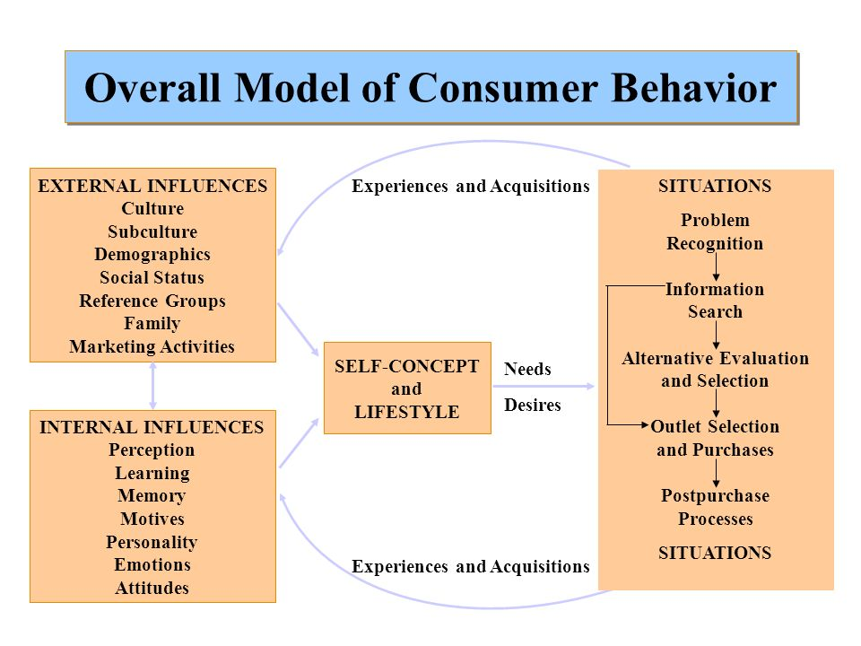 Marketing Strategy and Consumer Behavior Individual Firm Society Problem Recognition Information Search Alternative Evaluation Purchase Use Evaluation