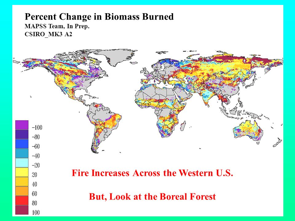 Climate Change Uncertainty and Forecasts of Global to Landscape