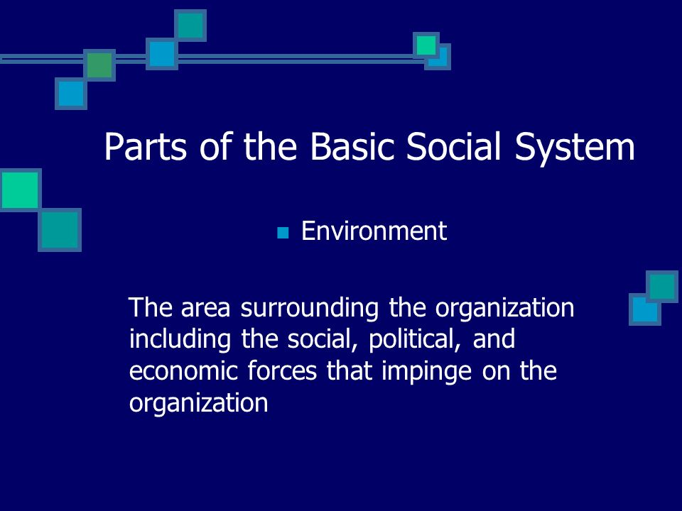 Parts of the Basic Social System Feedback Information concerning the outputs or the transformation process of the organization that influence decision making and the selection of inputs during the next cycle