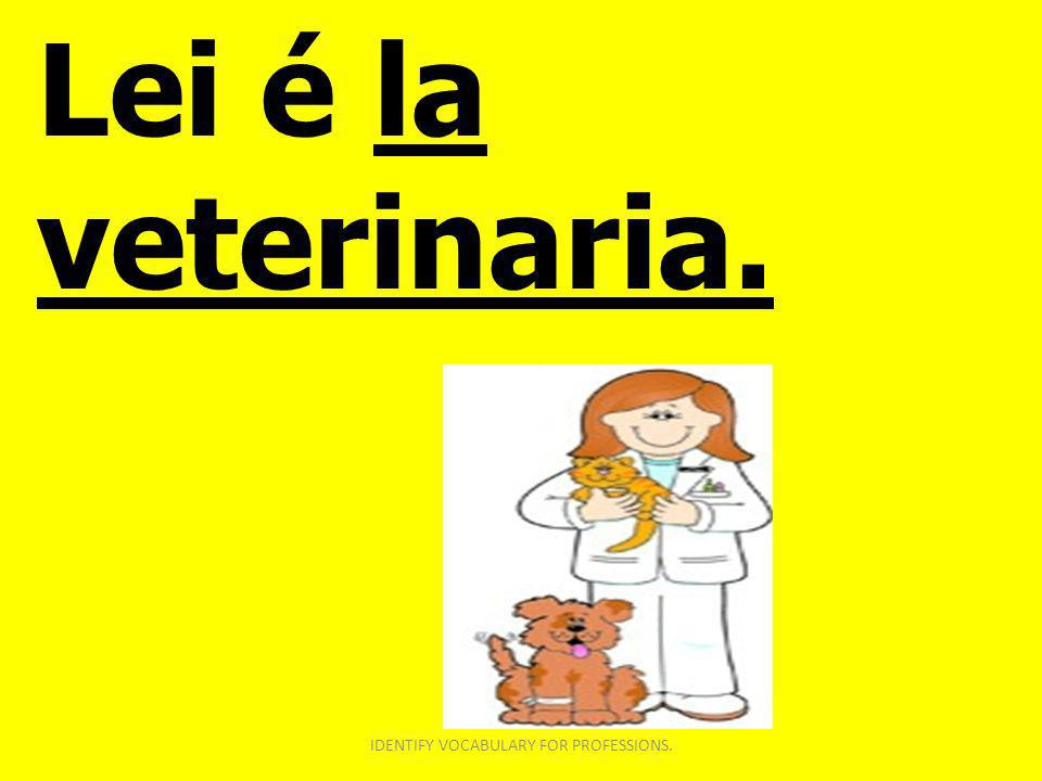 Lei é la veterinaria. IDENTIFY VOCABULARY FOR PROFESSIONS.