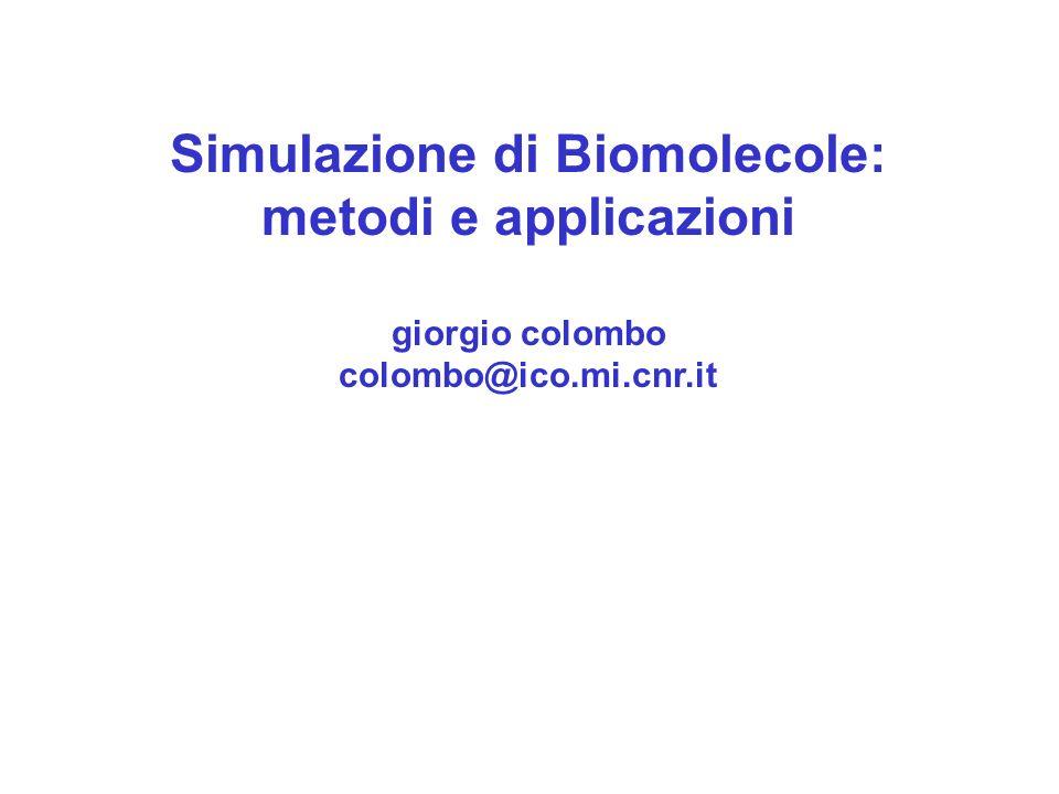 Simulazione di Biomolecole: metodi e applicazioni giorgio colombo colombo@ico.mi.cnr.it