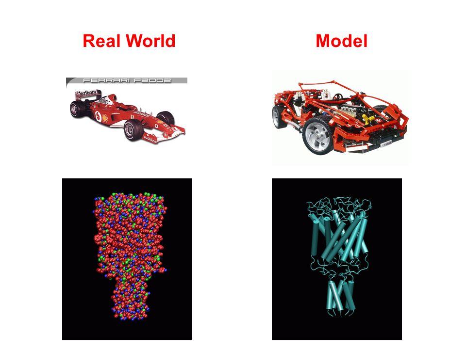 Real WorldModel