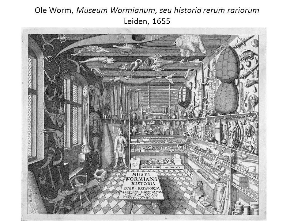 Ole Worm, Museum Wormianum, seu historia rerum rariorum Leiden, 1655