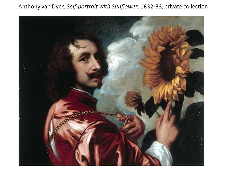 Anthony van Dyck, Self-portrait with Sunflower, 1632-33, private collection