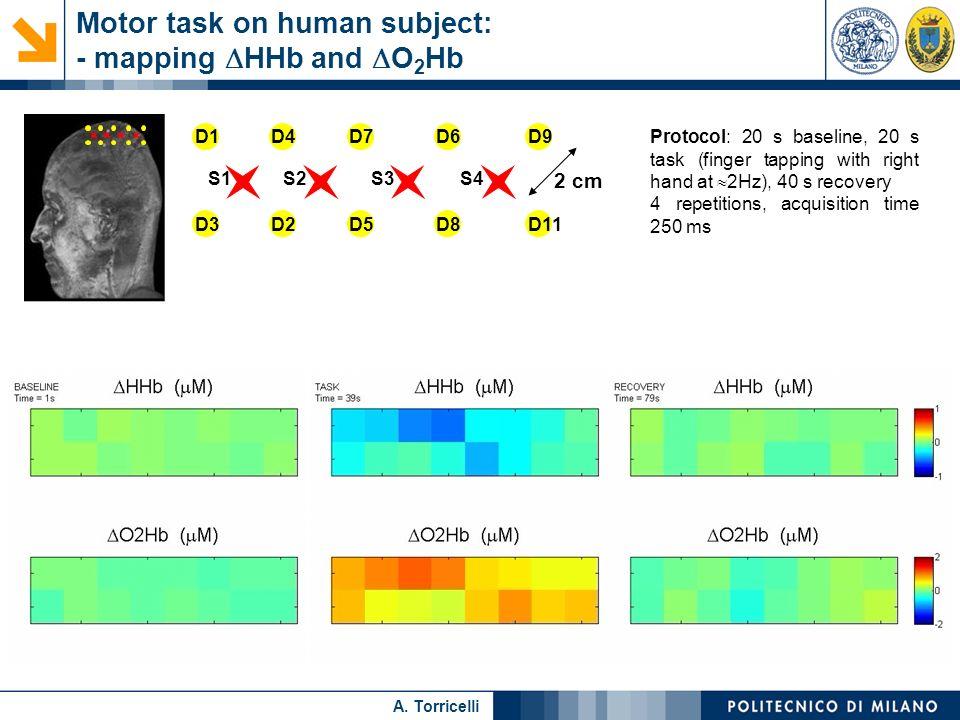 Nome relatore A. Torricelli Motor task on human subject: - mapping HHb and O 2 Hb S1S2S3S4 D1D4D7D6D9 D3D2D5D8D11 2 cm Protocol: 20 s baseline, 20 s t