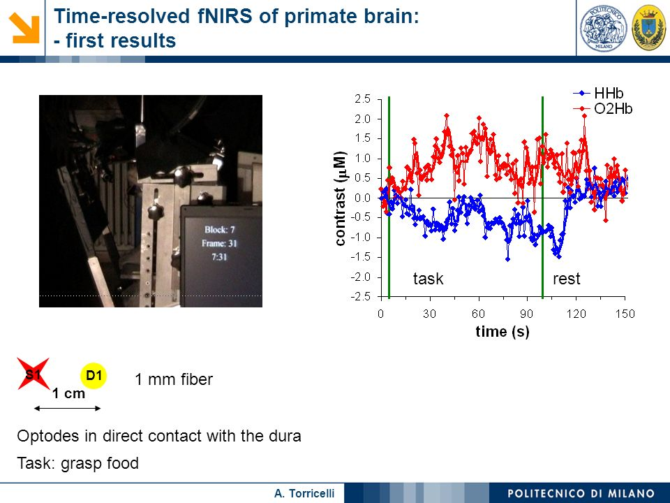 Nome relatore A. Torricelli Time-resolved fNIRS of primate brain: - first results S1 D1 1 mm fiber 1 cm taskrest Optodes in direct contact with the du