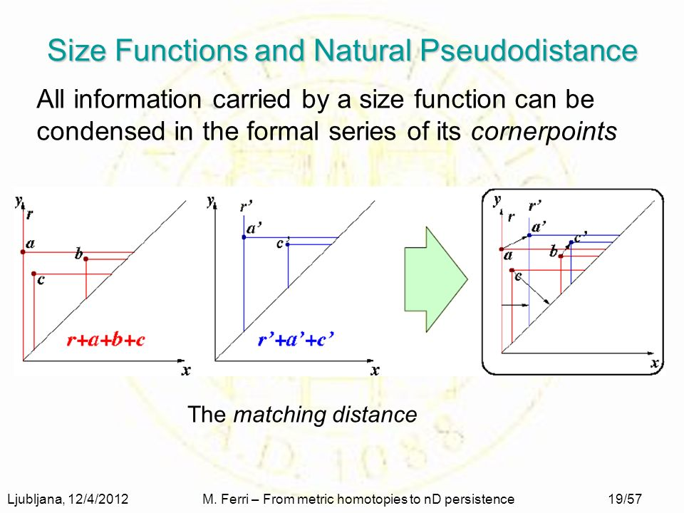 Ljubljana, 12/4/2012M. Ferri – From metric homotopies to nD persistence19/57 Size Functions and Natural Pseudodistance All information carried by a si