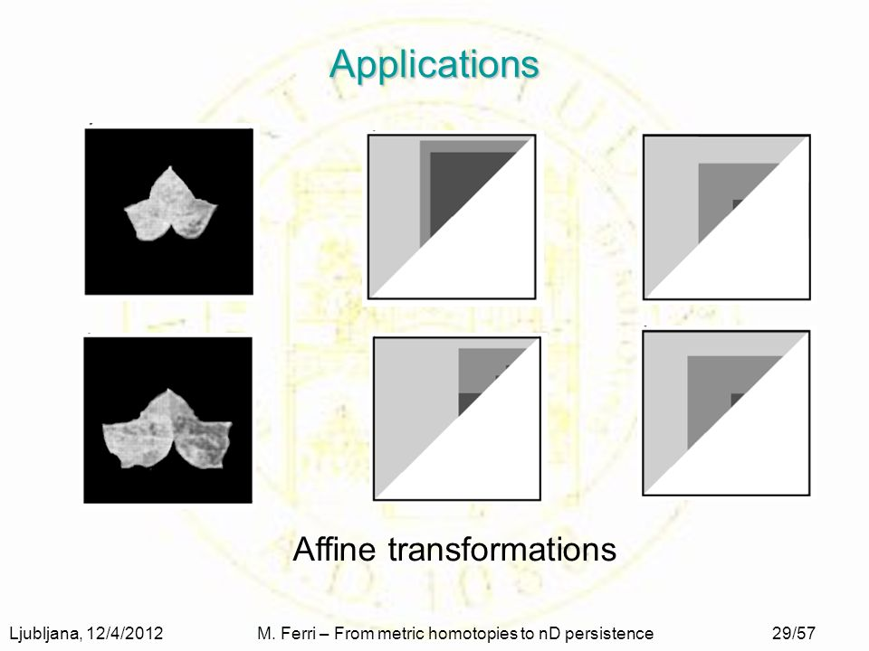 Ljubljana, 12/4/2012M. Ferri – From metric homotopies to nD persistence29/57 Applications Affine transformations