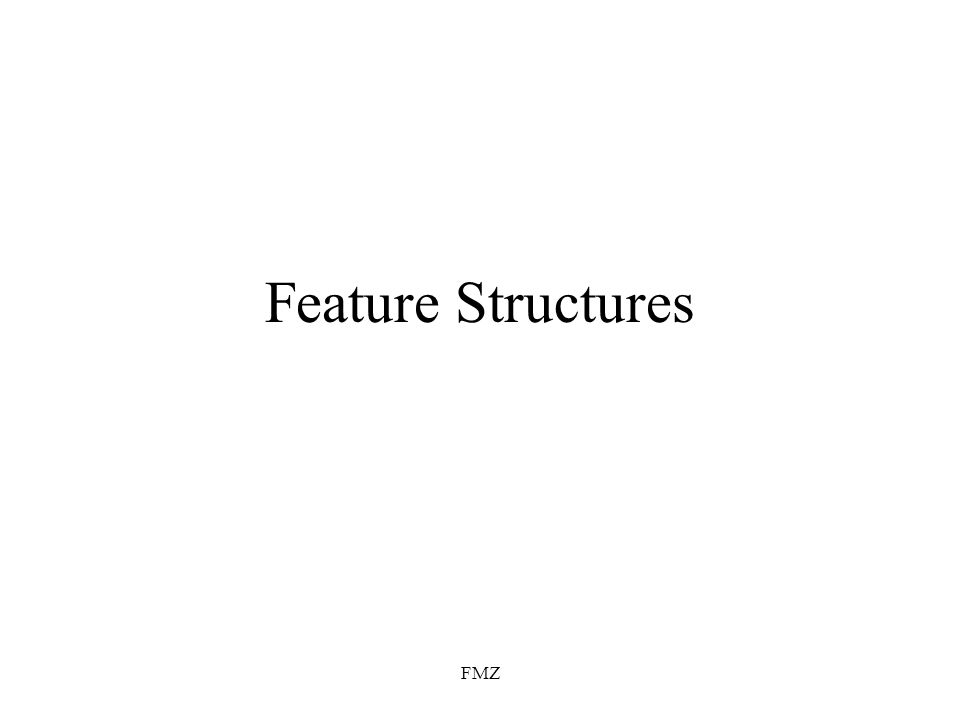 FMZ Feature Structures