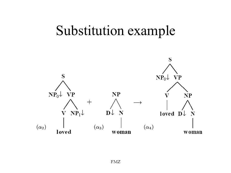 FMZ Substitution example