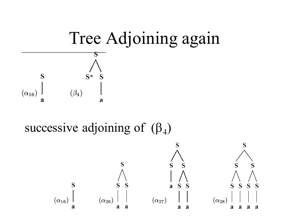FMZ Tree Adjoining again successive adjoining of ( 4 )