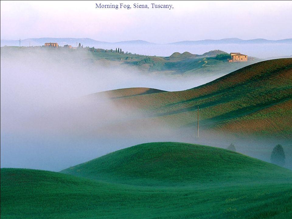 Morning Fog, Siena, Tuscany,