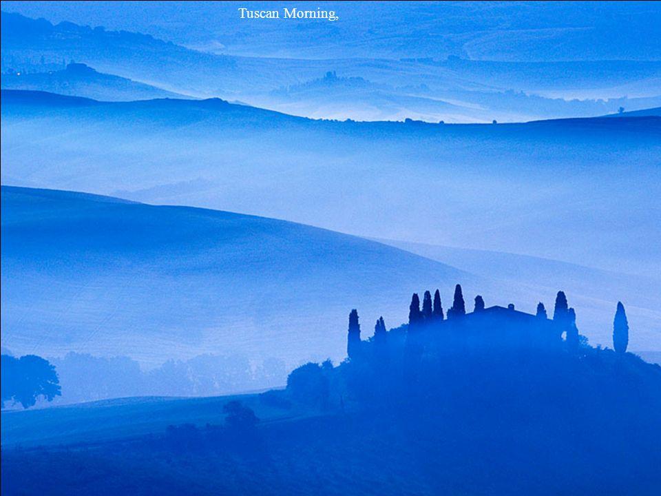 Tuscan Morning,