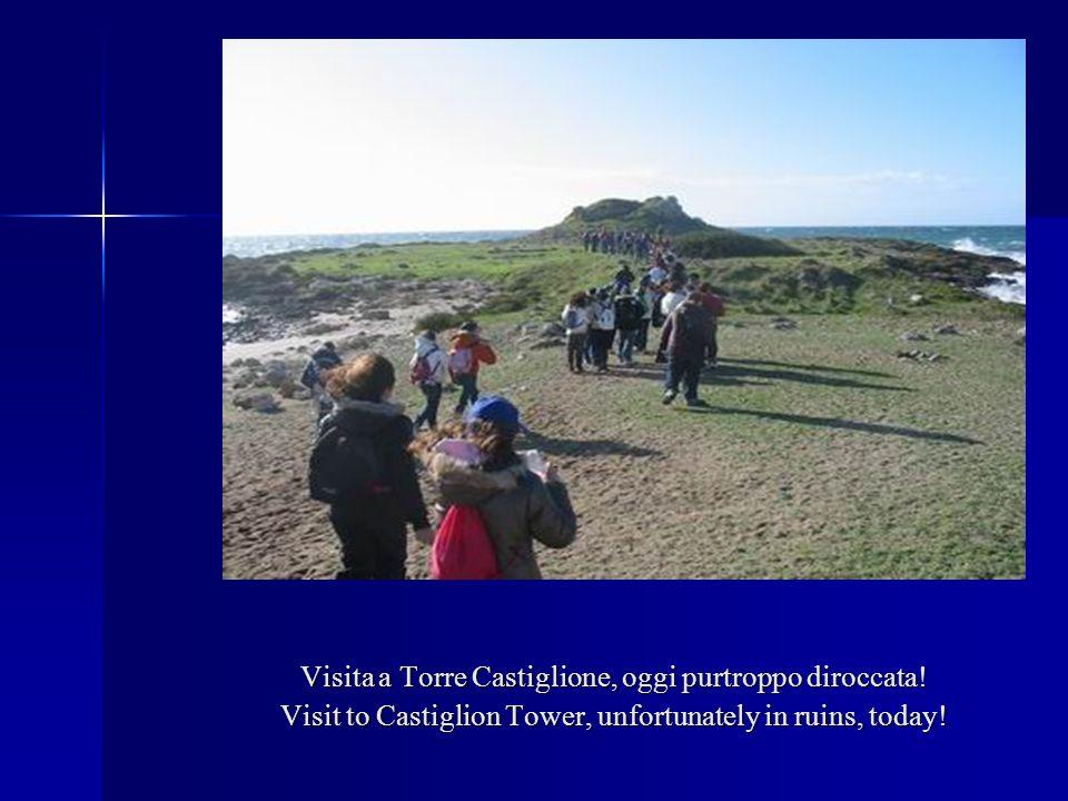Visita a Torre Castiglione, oggi purtroppo diroccata! Visit to Castiglion Tower, unfortunately in ruins, today!