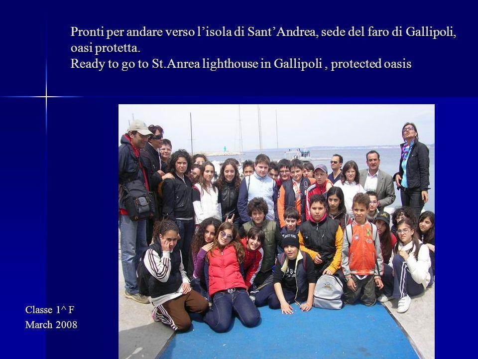 Pronti per andare verso lisola di SantAndrea, sede del faro di Gallipoli, oasi protetta. Ready to go to St.Anrea lighthouse in Gallipoli, protected oa