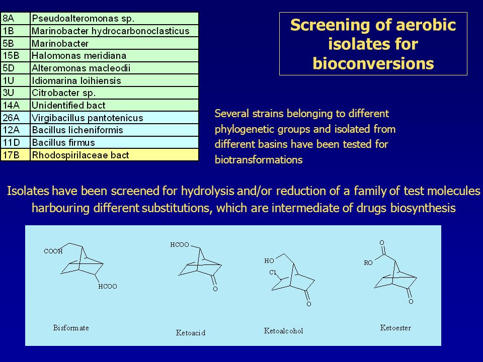 Screening of aerobic isolates for bioconversions Several strains belonging to different phylogenetic groups and isolated from different basins have been tested for biotransformations Isolates have been screened for hydrolysis and/or reduction of a family of test molecules harbouring different substitutions, which are intermediate of drugs biosynthesis