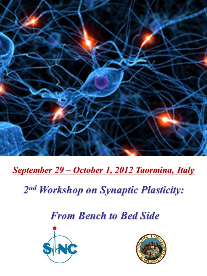 September 29 – October 1, 2012 Taormina, Italy 2 nd Workshop on Synaptic Plasticity: From Bench to Bed Side From Bench to Bed Side