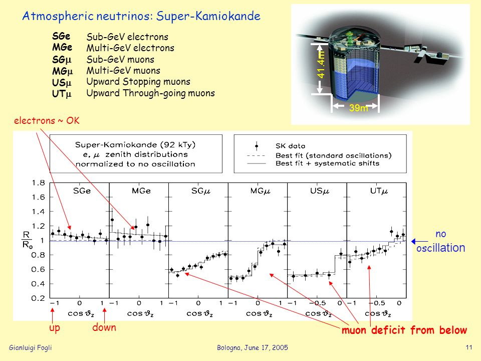 Gianluigi FogliBologna, June 17, 2005 11 Atmospheric neutrinos: Super-Kamiokande 39m 41.4m SGe MGe SG MG US UT Sub-GeV electrons Multi-GeV electrons Sub-GeV muons Multi-GeV muons Upward Stopping muons Upward Through-going muons no osc illation up down electrons ~ OK muon deficit from below