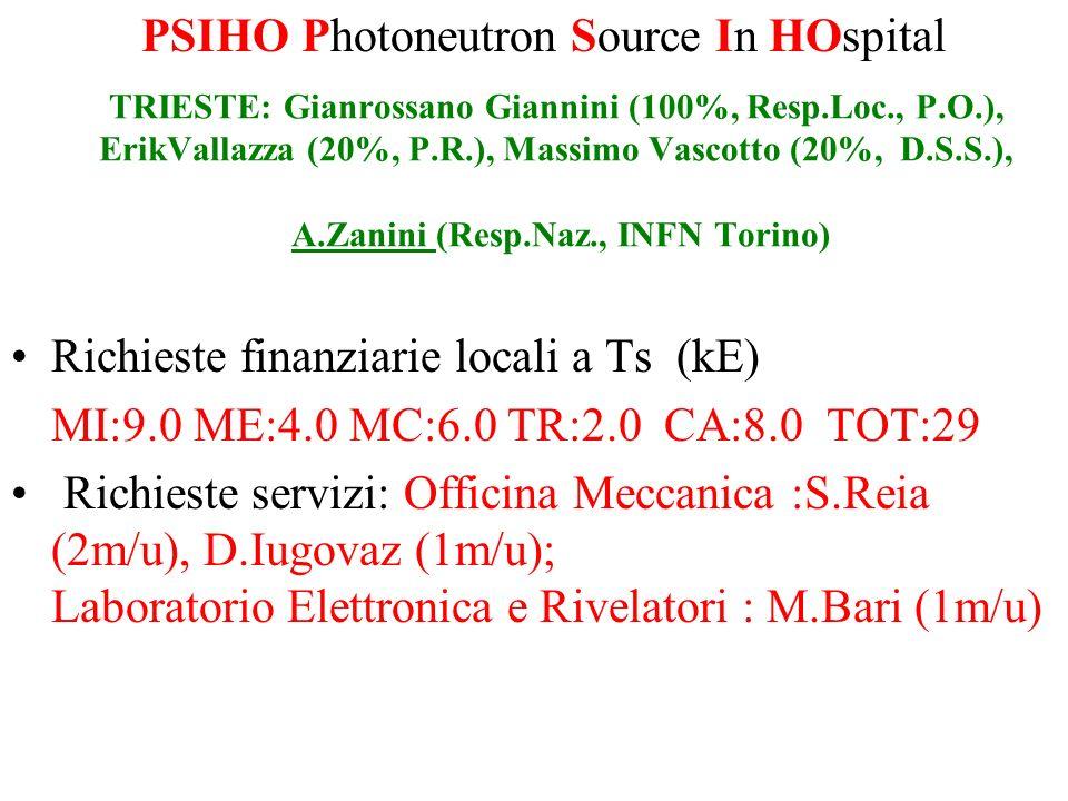 TRIESTE: Gianrossano Giannini (100%, Resp.Loc., P.O.), ErikVallazza (20%, P.R.), Massimo Vascotto (20%, D.S.S.), A.Zanini (Resp.Naz., INFN Torino) Ric