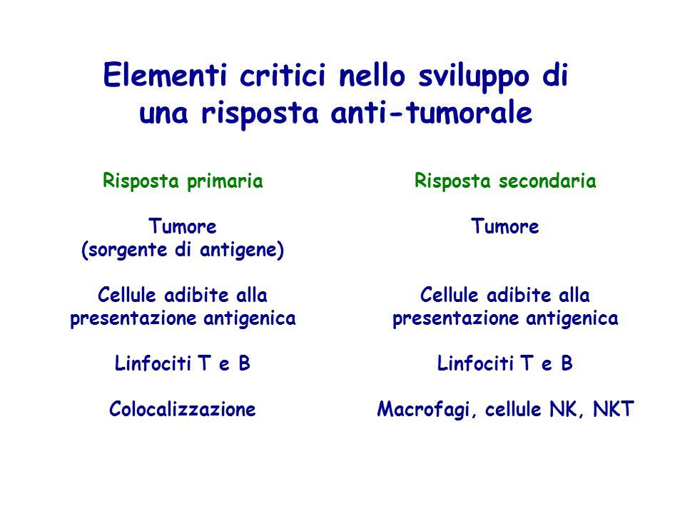 Risposta primaria Tumore (sorgente di antigene) Cellule adibite alla presentazione antigenica Linfociti T e B Colocalizzazione Elementi critici nello sviluppo di una risposta anti-tumorale Risposta secondaria Tumore Cellule adibite alla presentazione antigenica Linfociti T e B Macrofagi, cellule NK, NKT