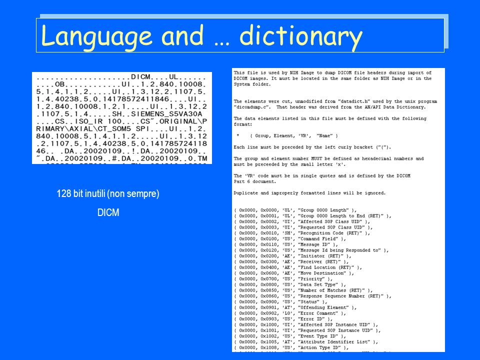 Language and … dictionary 128 bit inutili (non sempre) DICM