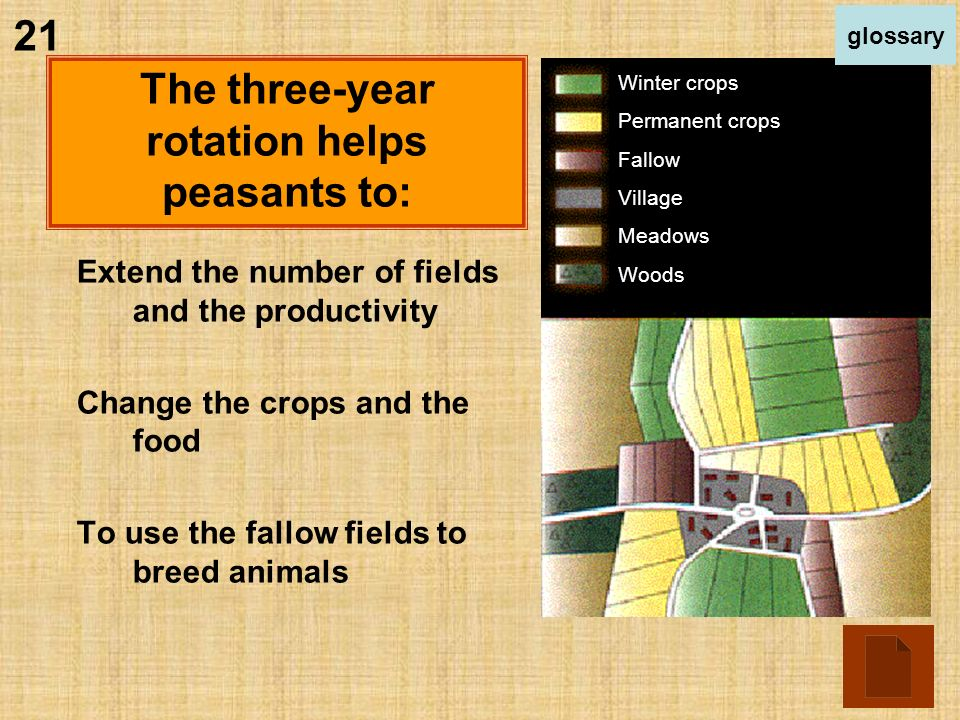 Extend the number of fields and the productivity Change the crops and the food To use the fallow fields to breed animals Winter crops Permanent crops Fallow Village Meadows Woods The three-year rotation helps peasants to: 21 glossary