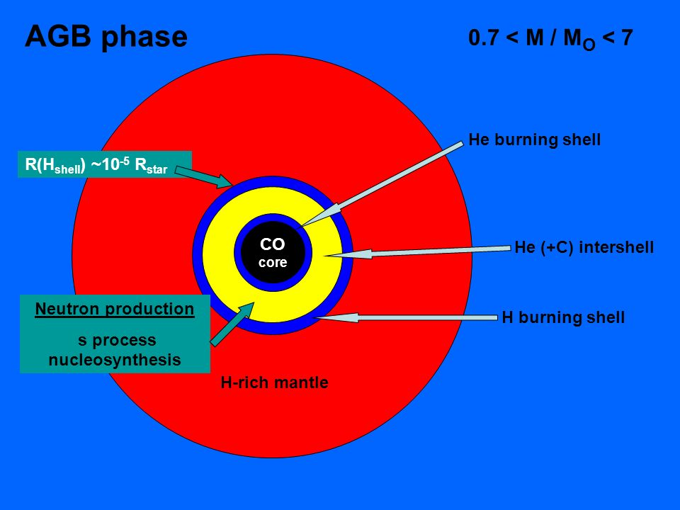 CO core H-rich mantle He burning shell He (+C) intershell H burning shell AGB phase R(H shell ) ~10 -5 R star 0.7 < M / M O < 7 Neutron production s process nucleosynthesis