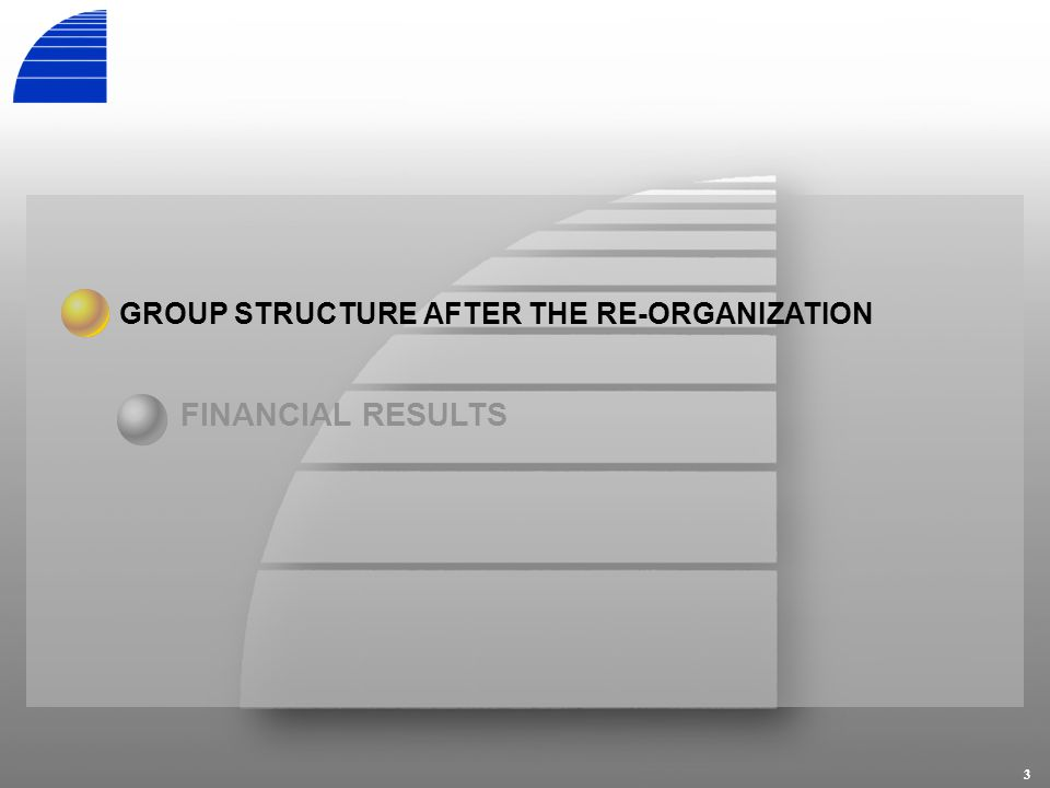 3 GROUP STRUCTURE AFTER THE RE-ORGANIZATION