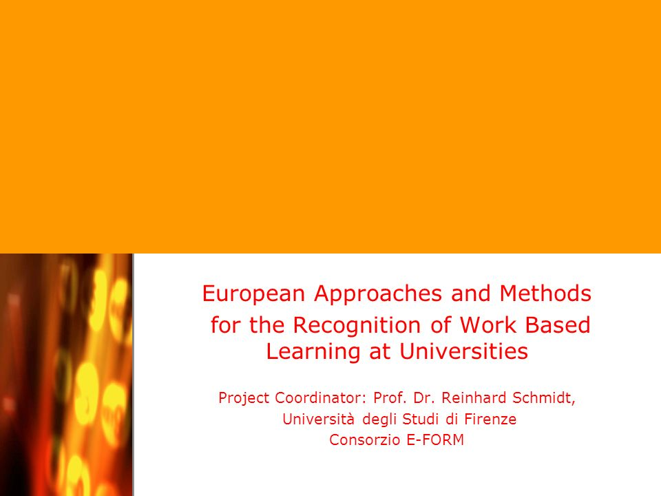 Project Coordinator: Professor Dr. Reinhard Schmidt / Università degli Studi di Firenze European Approaches and Methods for the Recognition of Work Ba