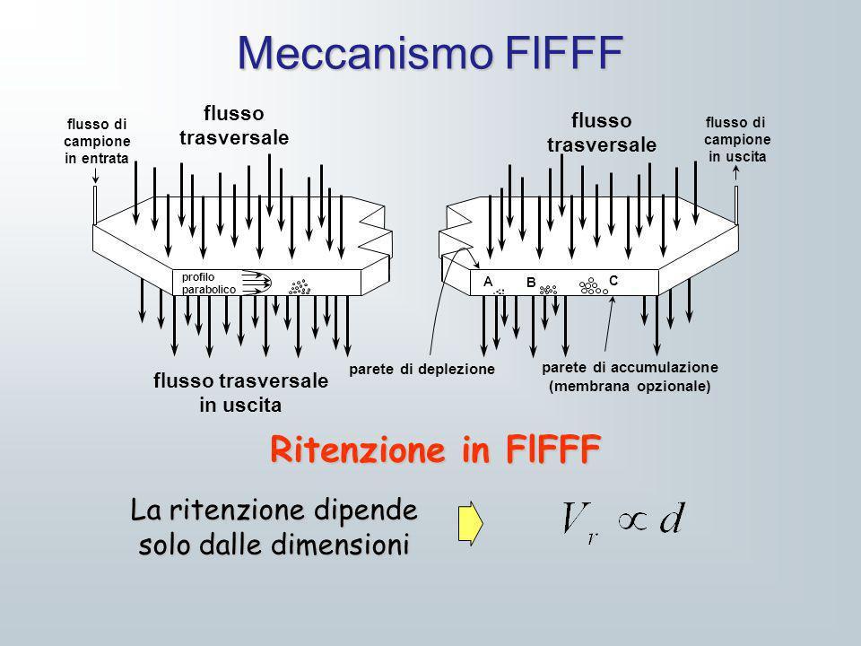 Meccanismo FlFFF flusso di campione in entrata flusso di campione in uscita flusso trasversale flusso trasversale flusso trasversale in uscita parete