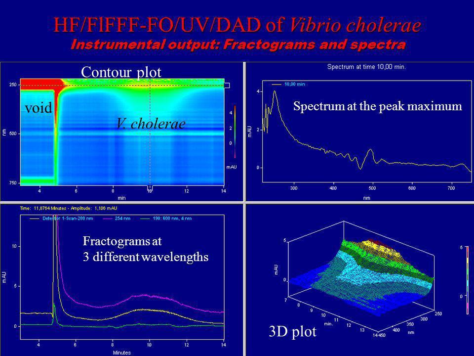 HF/FlFFF-FO/UV/DAD of Vibrio cholerae Instrumental output: Fractograms and spectra Contour plot void V. cholerae Spectrum at the peak maximum Fractogr