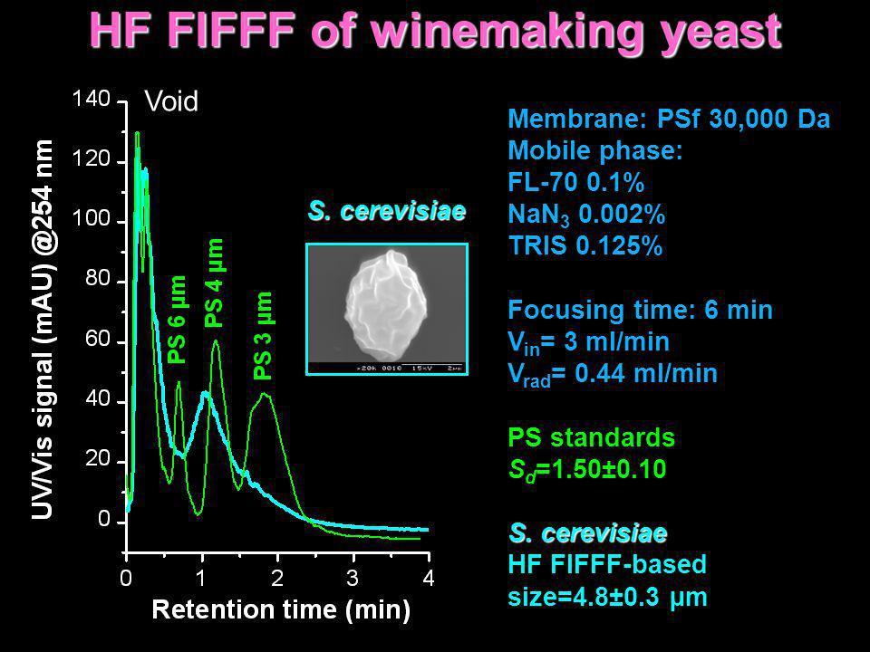 HF FlFFF of winemaking yeast Membrane: PSf 30,000 Da Mobile phase: FL-70 0.1% NaN 3 0.002% TRIS 0.125% Focusing time: 6 min V in = 3 ml/min V rad = 0.