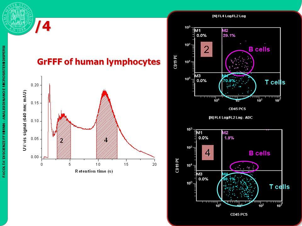 FACOLTA DI SCIENZE FF MM NN – ANALISI DI NANO E MICROSISTEMI DISPERSI 4 T cells B cells 2 T cells /4 GrFFF of human lymphocytes