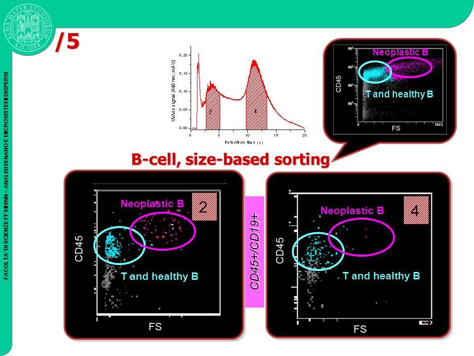 FACOLTA DI SCIENZE FF MM NN – ANALISI DI NANO E MICROSISTEMI DISPERSI 2 T and healthy B CD45 FS CD45 FS 4 T and healthy B Neoplastic B T and healthy B B-cell, size-based sorting CD45+/CD19+ Neoplastic B /5