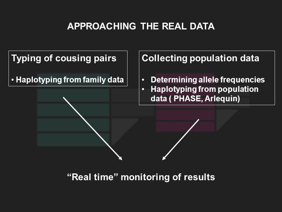APPROACHING THE REAL DATA Typing of cousing pairs Haplotyping from family data Collecting population data Determining allele frequencies Haplotyping f