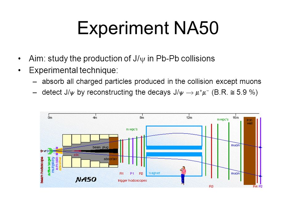 Experiment NA50 Aim: study the production of J/ in Pb-Pb collisions Experimental technique: –absorb all charged particles produced in the collision except muons –detect J/ by reconstructing the decays J/ (B.R.