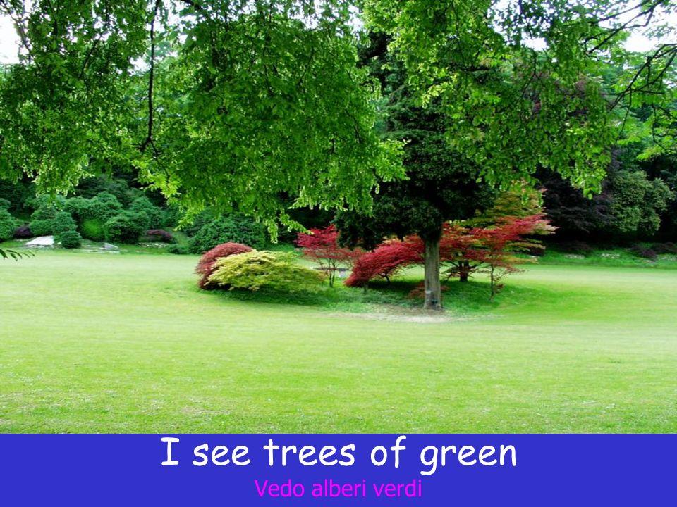 I see trees of green Vedo alberi verdi