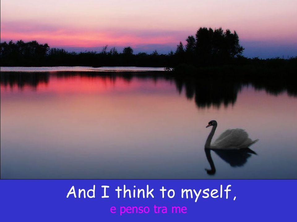 And I think to myself, e penso tra me